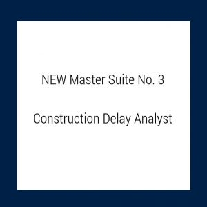 COnstruction Delay Analyst
