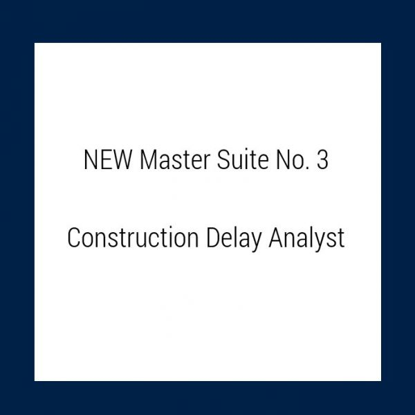 COnstruction Delay Analyst